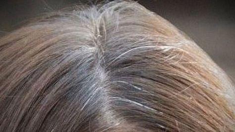 ¿Tienes el cabello con canas? Aquí está la solución para recuperar el color natural de tu cabello.