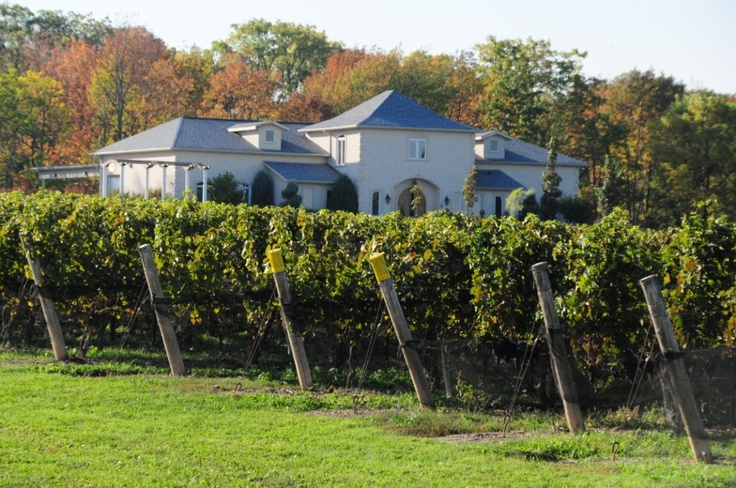 Rosewood Estates Winery is in Beamsville, Ontario. Rosewood makes mead as well as wine from grapes.
