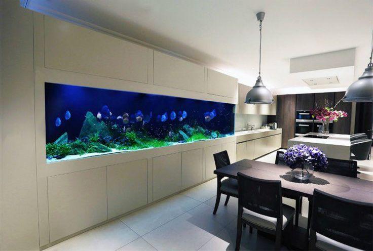 aquarium géant encastré dans le mur alliant la salle à manger et la cuisine