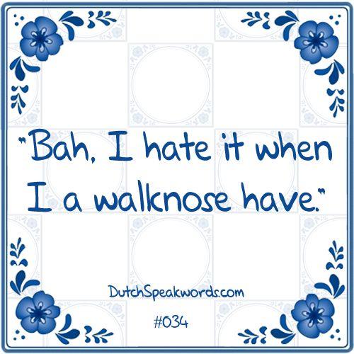 Dutch expressions in English: ik haat het als ik een loopneus heb.