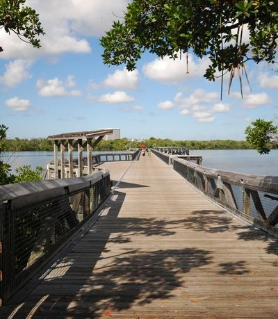 McArthur State Park is a Florida state park located in fabulous Singer Island. Singer Island is a waterfront community in the heart of north Palm Beach County. #McArthupark #singerisland #palmbeachcounty
