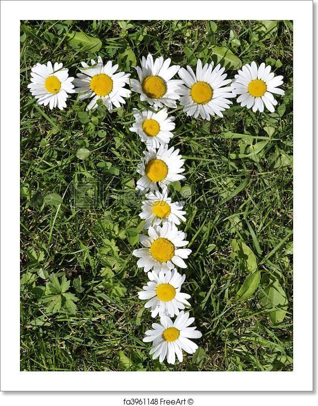 Lyric ganja farmer lyrics : 9 best Margaritas images on Pinterest | Flowers, Cross stitch ...