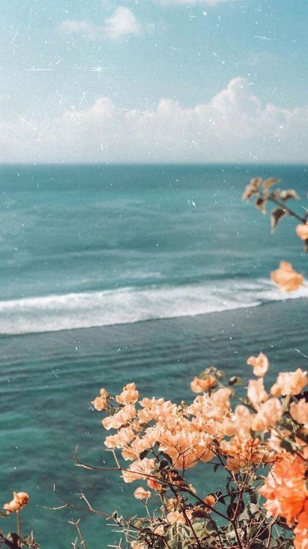 Friday Finds Ocean Flowers View Wallpaper Spring Wallpaper