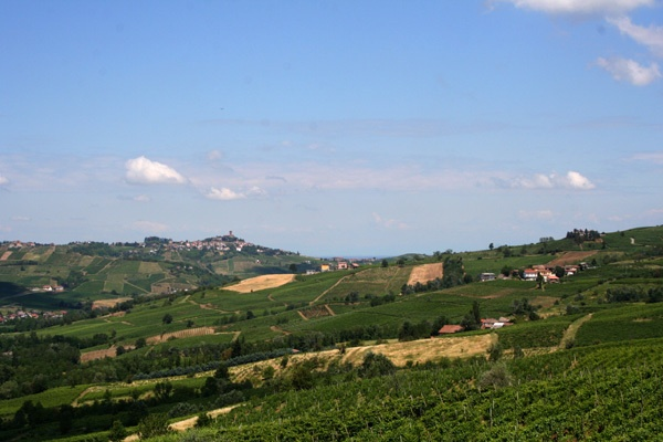 View - Villa I due Padroni in the vineyards of Lombardy in the North of Italy.