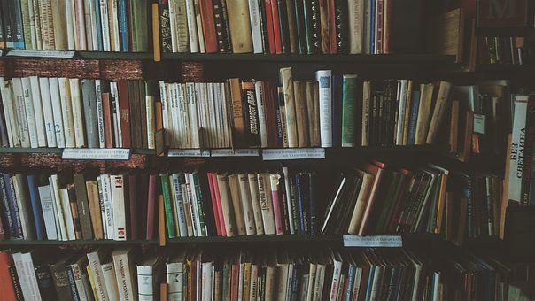 Regale, Książek, Biblioteczki