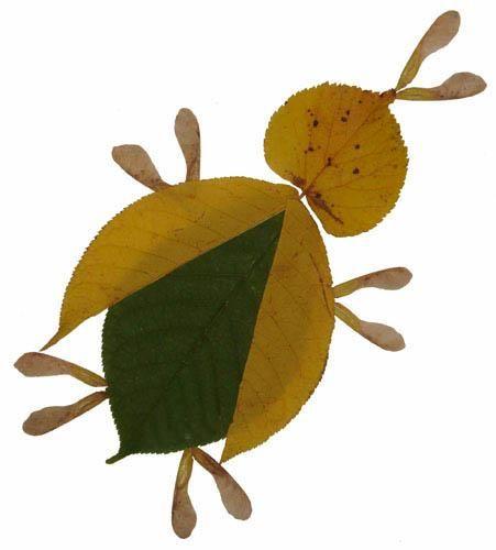 Kids art. Handmade autumn crafts. The BEETLE / Crafts for kids ...