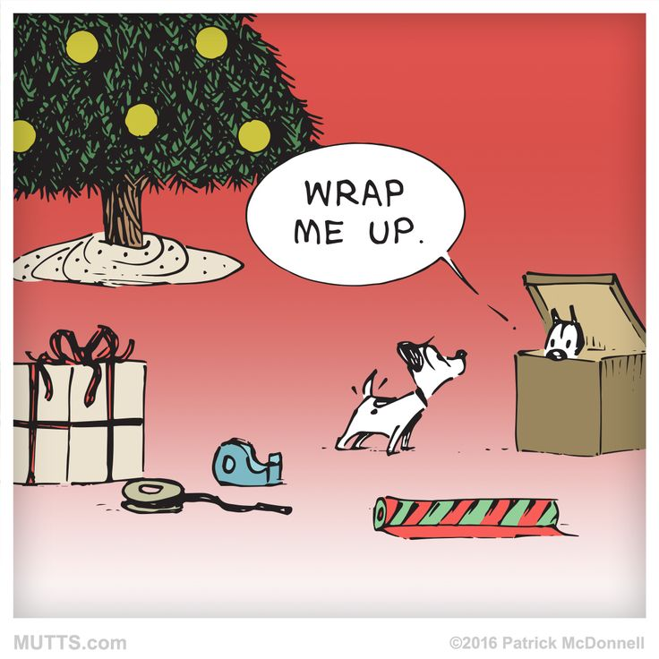 How are you spending #ChristmasEve?  #MUTTSofinstagram #dogstagram #catstagram #Christmasgift #petsofig