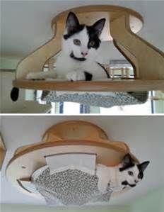 Homemade Cat Playground - Bing images