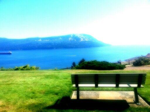 View from Arbutus Ridge, Vancouver Island