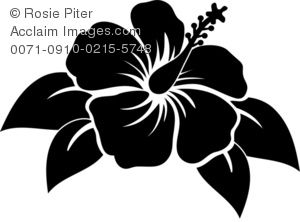 Silhouette of A Hibiscus Flower