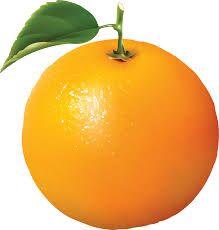 Image result for orange