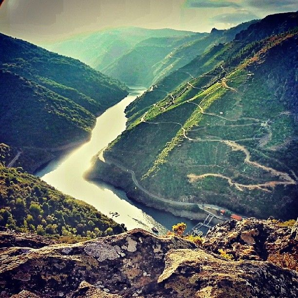 The vineyards in the Ribeira Sacra (Ourense) are breathtaking. Literally.