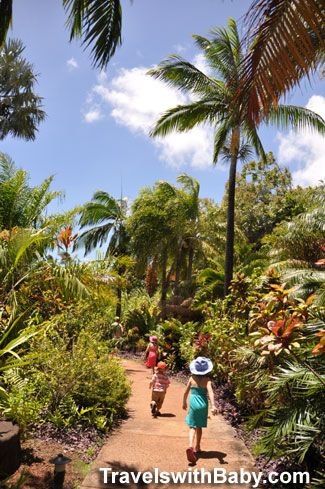 Entering into the National Tropical Botanical Garden for McBryde and Allerton Gardens - my tips for planning your visit, especially with young kids!