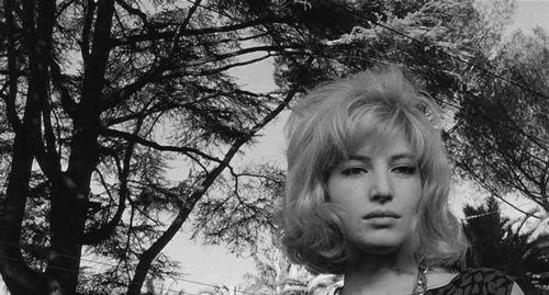 L'eclisse, 1962 .gif