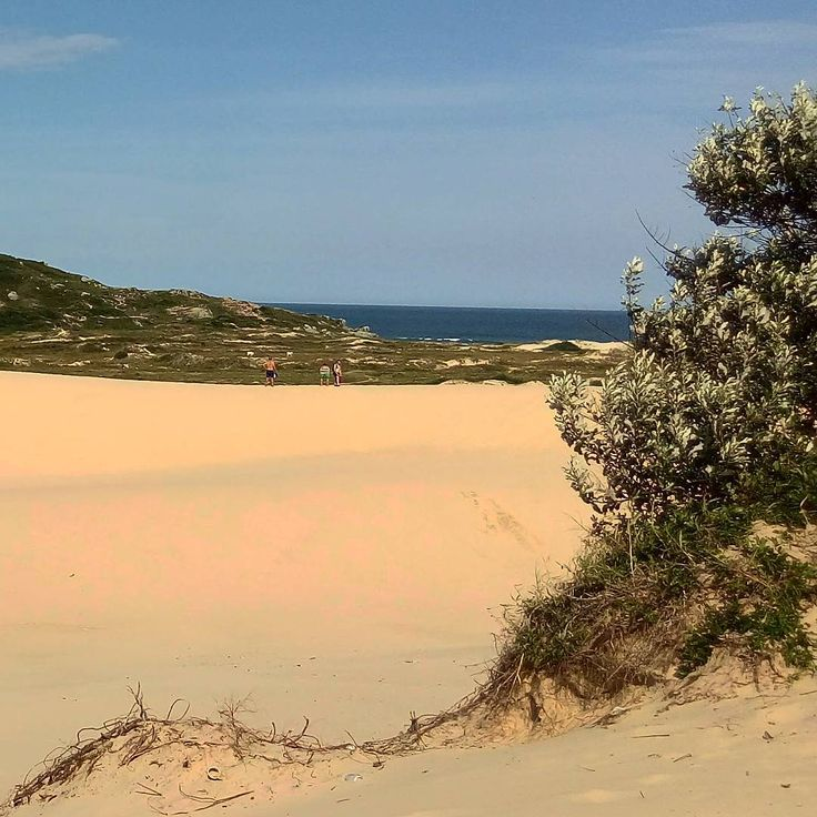 Dunas da Joaquina Floripa Brasil ���� �� �� �� #nature #sky #nature_lovers #nature_brilliance #ff_nature #naturephotography #natureshots #outdoors #landscape #amazing #view #trip #tree #mountains #beach #praias #landscapelovers #landscape_lover #travel #traveling #vacation #visiting #traveler #instatravel #instago #instagood #holiday #Argentina #Buenosaires #ig_worldclub http://tipsrazzi.com/ipost/1507490738190057608/?code=BTrrtbgAoCI