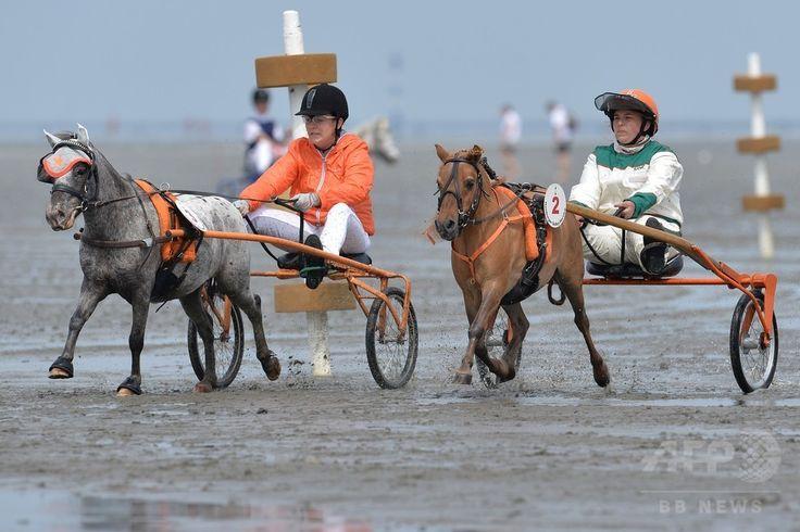 ドイツ北部クックスハーフェン(Cuxhaven)で、ワッデン海(Wadden Sea)の干潟を舞台に開催された競馬大会に小型のポニーと共に参加した選手ら(2014年7月20日撮影)。(c)AFP/DPA/CARMEN JASPERSEN ▼22Jul2014AFP 干潟を舞台に競馬大会、ドイツ北部 http://www.afpbb.com/articles/-/3021052 #Cuxhaven