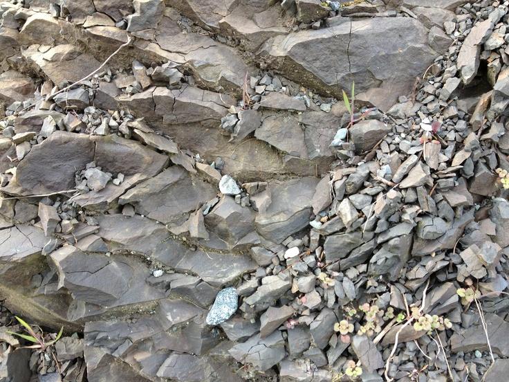 Patterned Rock