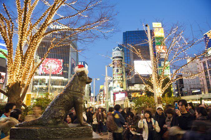 Hachikō Statue, Tokyo, Japan