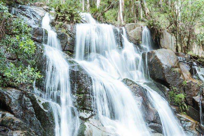 Toorongo Falls Landscape image