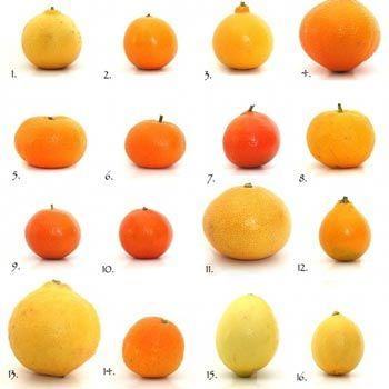 5 Amazing Health Benefits Of Citrus Fruits