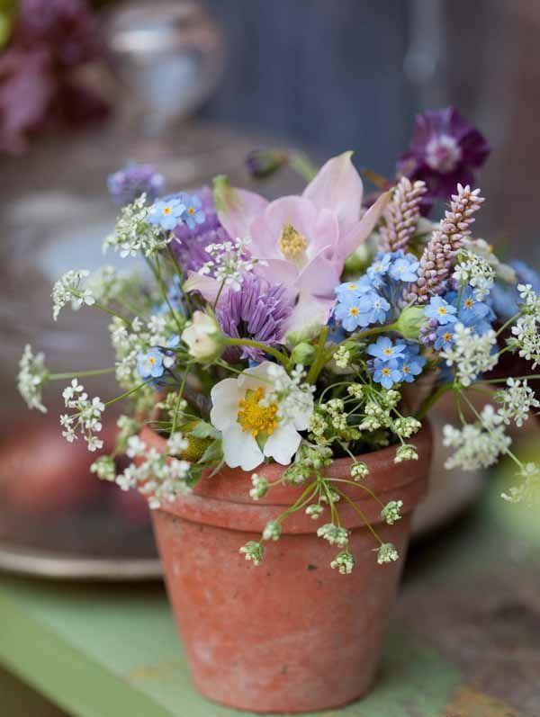 Potted flowers #arrangements #floristry