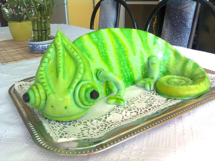 Chameleon cake for a veterinary