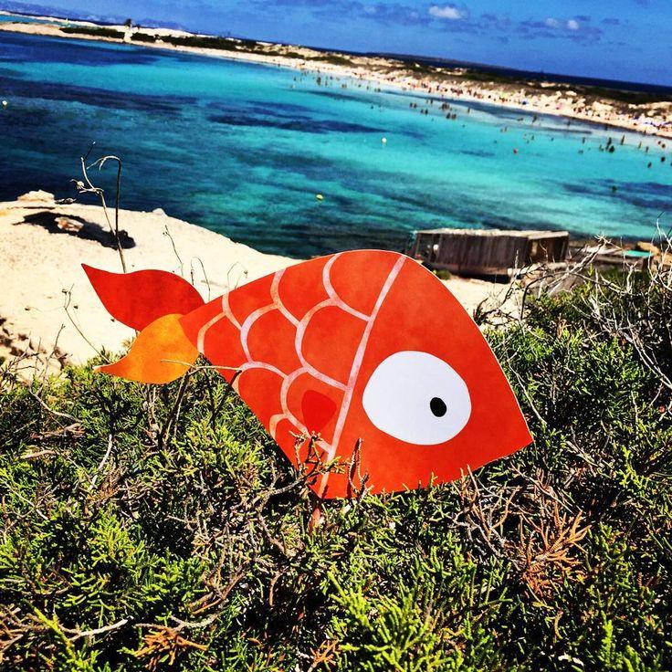 El pez de #SIDN ha aterrizado en #Ibiza :-)