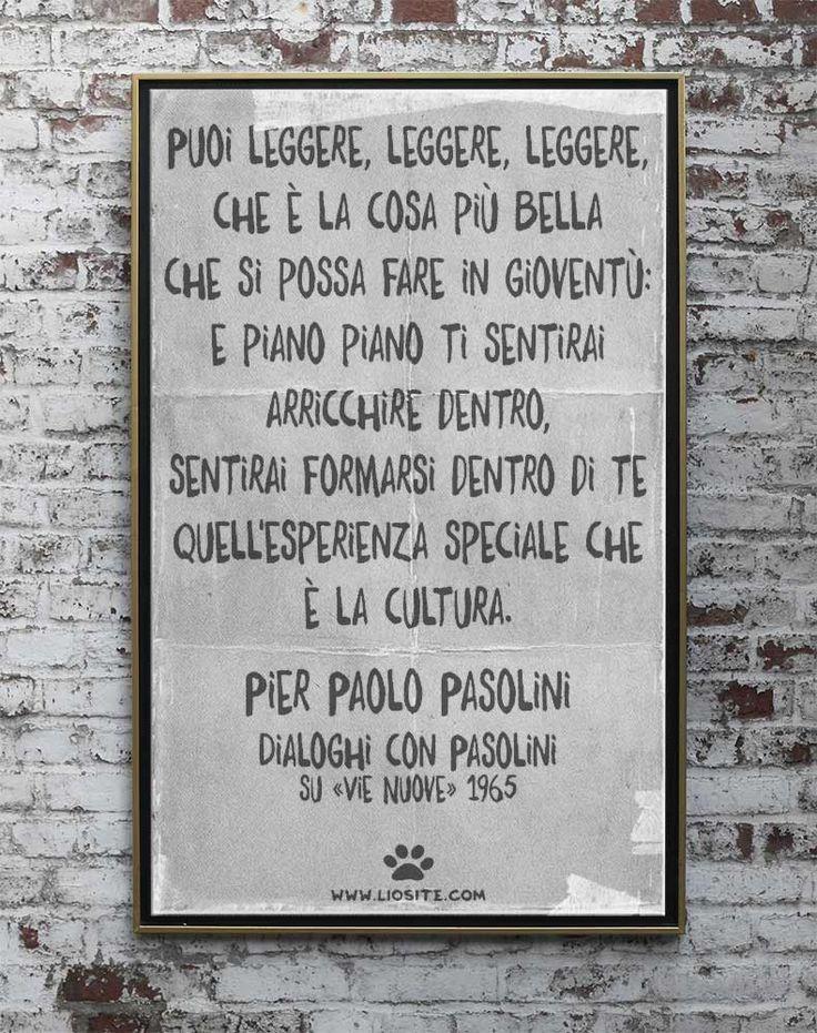 """Grande pensiero e grande mente, un italiano del passato ormai. Se gli italiani seguissero questo consiglio, sono sicura che l'Italia andrebbe decisamente meglio.  """"Puoi leggere, leggere, leggere, che è la cosa più bella che si possa fare in gioventù: e piano piano ti sentirai arricchire dentro, sentirai formarsi dentro di te quell'esperienza speciale che è la cultura.""""   Pier Paolo Pasolini - Dialoghi con Pasolini su «Vie Nuove» 1965 #pasolini, #pierpaolopasolini, #leggere, #cultura…"""