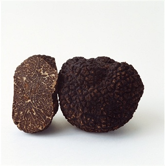 Fresh black truffles from the Perigord region in France. For recipes, please visit our Facebook page.