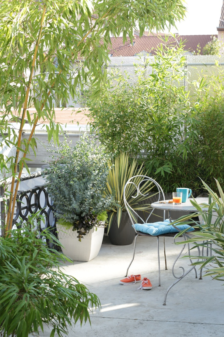 Balcons et terrasses fleuris - botanic®