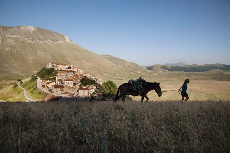 Steve McCurry - Castelluccio di Norcia – Pian Grande