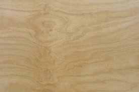 hoop pine ply sample - Google Search
