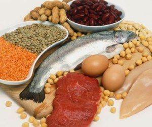 Proteine, Integratori, Perdere Peso