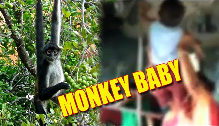 Naughty baby i ever seen!!! JUST LOOK THIS RESTLESS MONKEY BOY WHAT HE DID IN HIS MOM'S ARMS!!