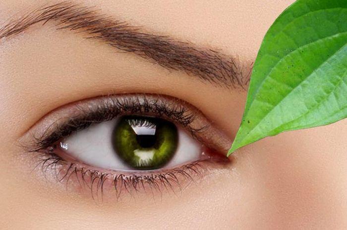 28+ Cara mengobati mata juling tanpa operasi trends
