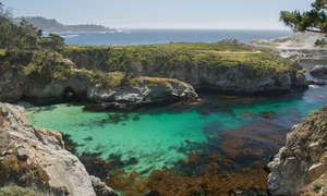 The ultimate guide to Big Sur's stunning Point Lobos - Posted on Roadtrippers.com!