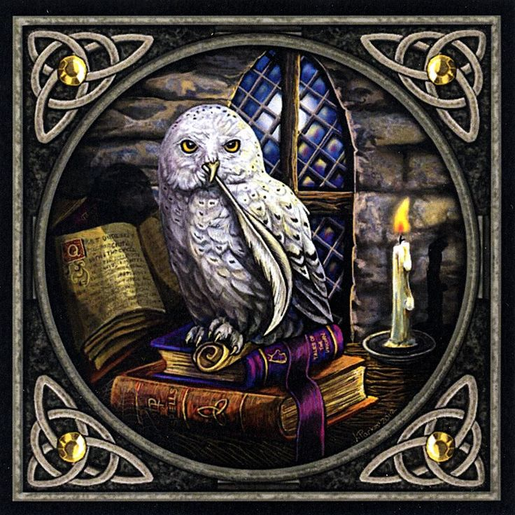 """""""Literary Owl"""" Cross Stitch Pattern - This studious snowy owl has foregone his usual nocturnal adventures in favor of an evening spent with his favorite books. Perhaps he will even pen some thoughts of his own. Based on artwork by Lisa Parker. This is a very detailed pattern, measuring 525 stitches wide by 525 stitches tall."""