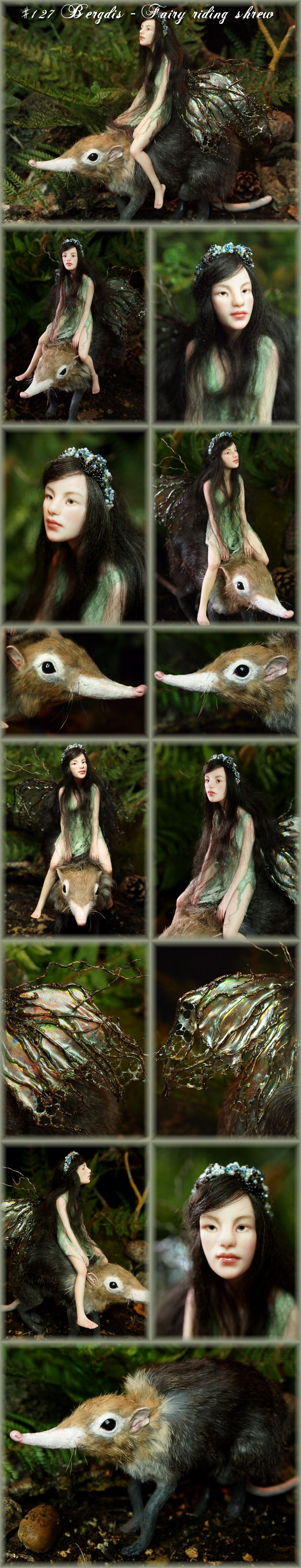 Nenúfar Blanco ~ #127 Bergdis - Fairy riding shrew