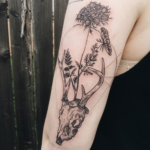 #tattoofriday - tattoos fauna & flora - Pony Reinhardt;