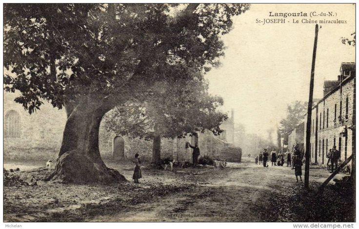 Langourla: Le chêne miraculeux