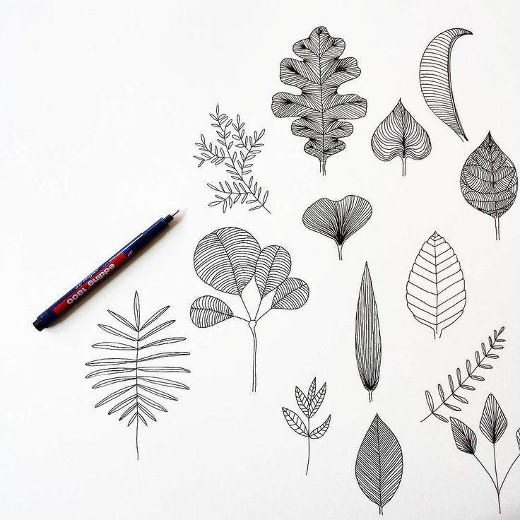 Getting ready for the fall. #loveobjects #lüneburg #hamburg #germany #interiordesign #homedecor #illustration #drawing #graphicdesign #scribble #doodle #linedrawing #penwork #patterns #styling #interiorstyling #leaves #blätter #trees #naturelovers #vsco #vscocam #vscogermany #vscogood #vscobest #graphicdesign