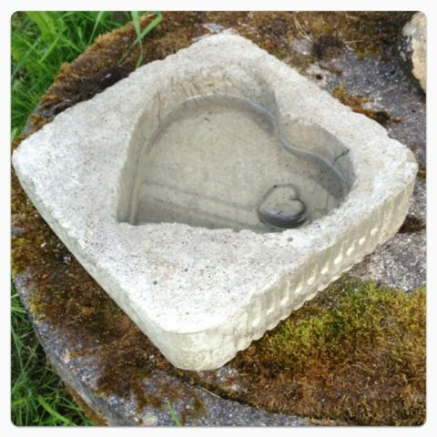 A heartshaped birdbath I made in concrete