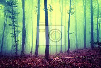 Żółty niebieski nasycone magiczny sezon las mglisty krajobraz na obrazach Redro. Najlepszej jakości fototapety, naklejki, obrazy, plakaty, poduszki, tapety. Chcesz ozdobić swój dom? Tylko z Redro