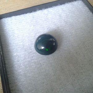 Black Opal Kalimaya Kilau Air Laut Hijau Rumput Laut.