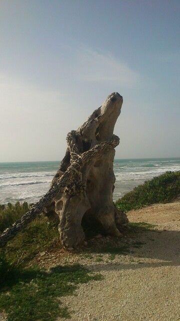 Scicli. Beach. Sicily. Il poggio delle cicale. Cambiocavallo hotel. Cava d' aliga