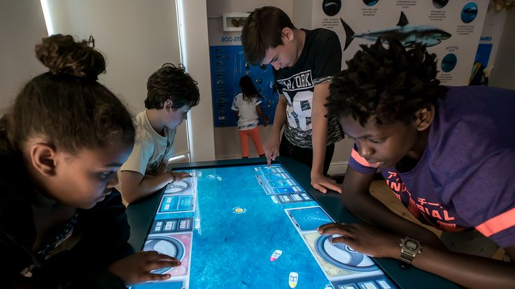 For the Save Our Seas Shark Education Centre in Kalk Bay, our team of exhibit design experts created a series of interactive digital experiences for children to discover, learn about and care for different shark species.
