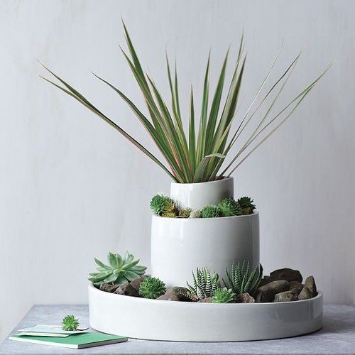 Wonderful Modern Indoor Pots And Planters