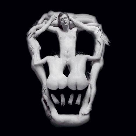 Piotr Uklanski  Untitled (Skull)  1999: Salvador Dali Skull, Artists Gems, Piotr Uklanski, Skull Body, Untitl Skull, Uklanski Untitl, Skull Art, Piotruklanski, Photo