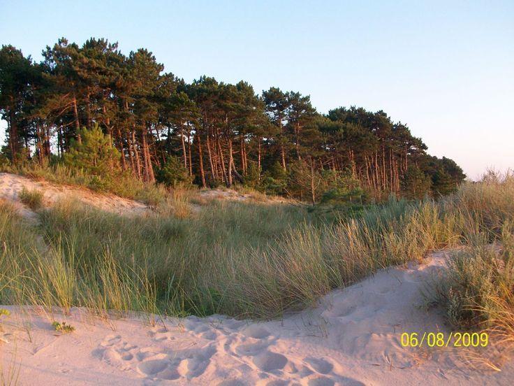 Dąbki wydmy i plaża #Bałtyk #morze #Bałtyckie #Baltic #sea #Darłowo #Dąbki #koszalińskie #Polska #Poland #wybrzeże #zachodniopomorskie #zachód #słońca #wydmy #plaża #Darłówek