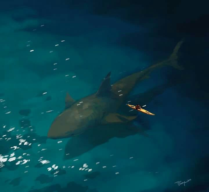 Megalodon shark if they were alive today